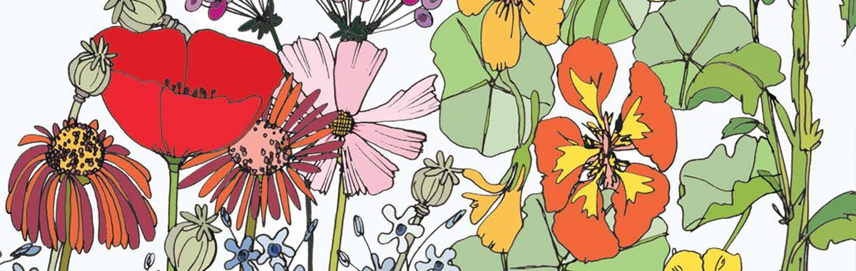 Plant Make Sew & Grow_header